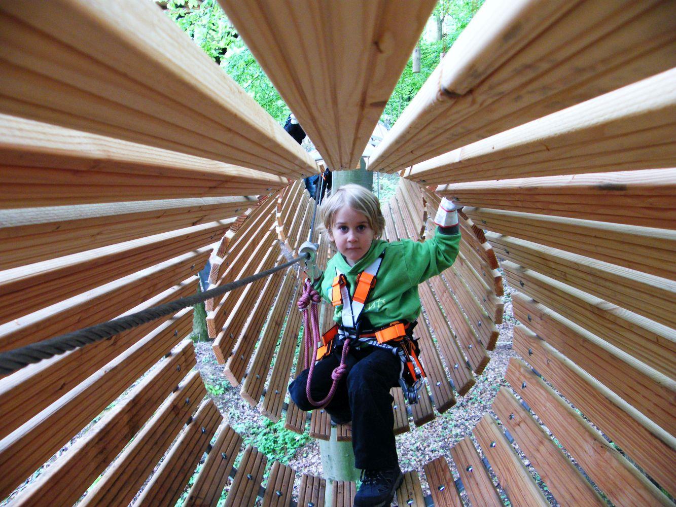 Kletterausrüstung Bonn : Nervenkitzel im gigantischen kletterwald in bonn u für die ganze