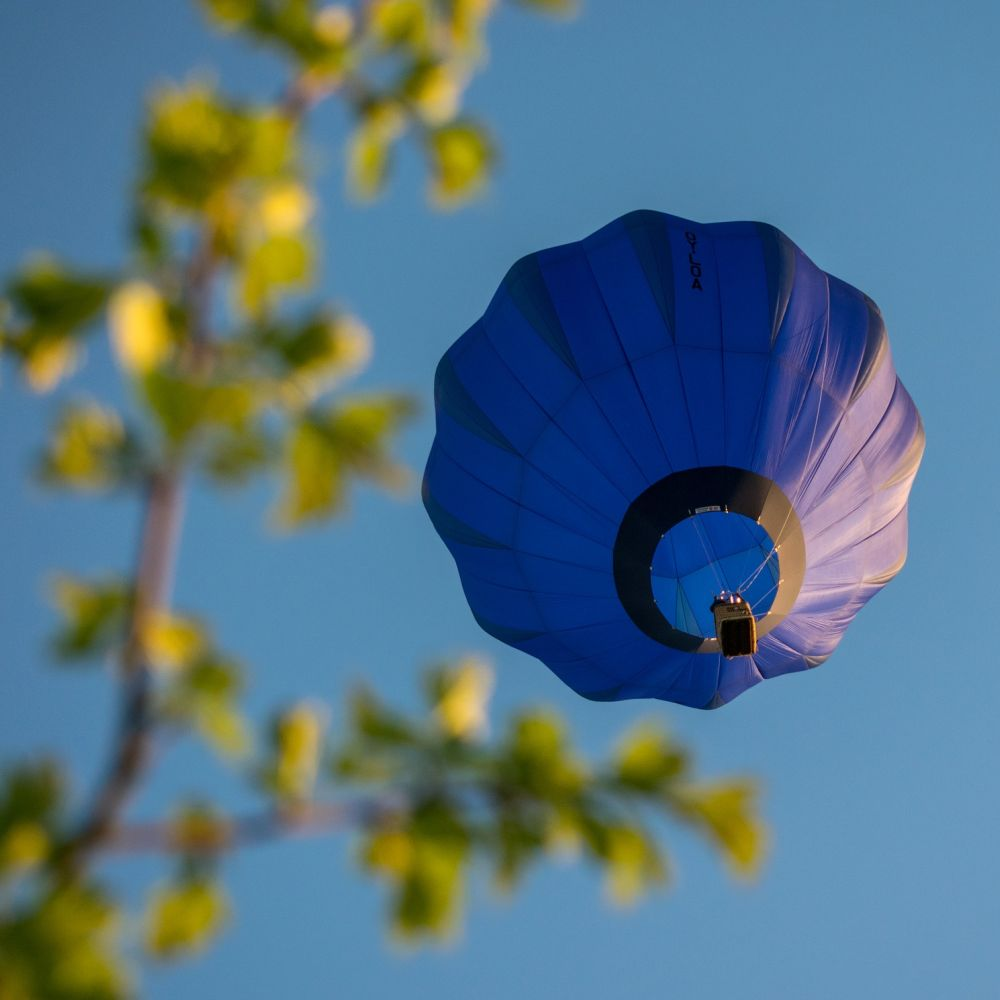 Ballonfestival in Bonn